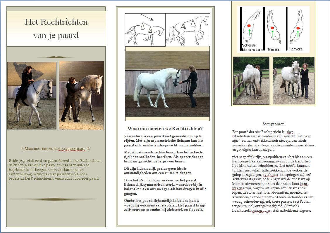 Klassiek Paardrijden - Nieuws